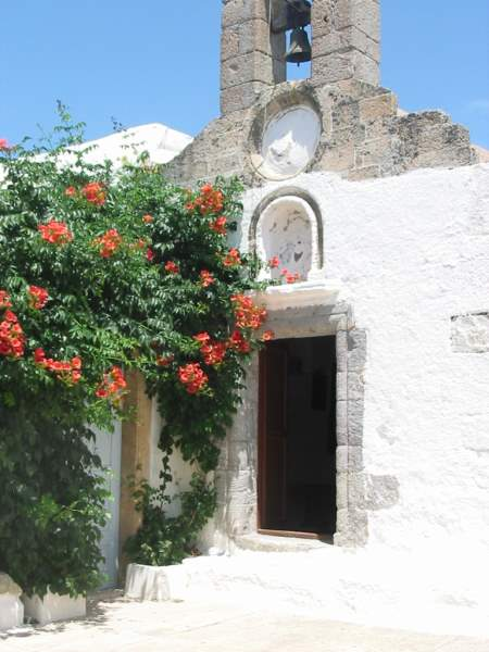 plants growing besides Patmos churches and small monasteries everywhere!